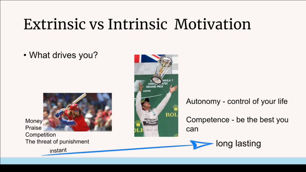 intrinsic and extrinsic motivation example with Bryce Harper and Lewis Hamilton